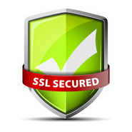 SSL Certified Website Icon